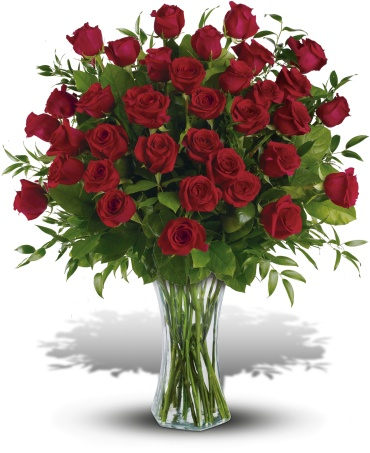 Breathtaking Beauty - 36 Long Stemmed Roses