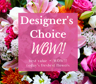Designer\'s Choice Wow!