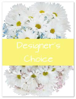 Designer\'s Choice - New Baby